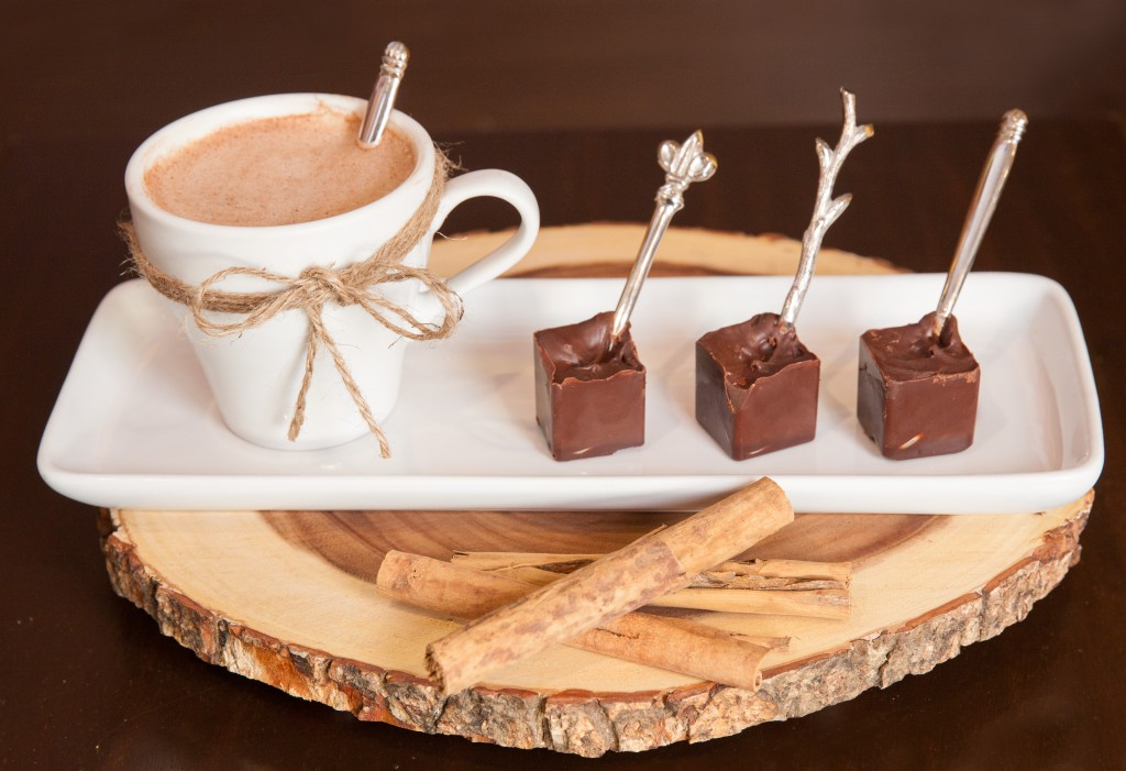Choco-Cinnamon Popsicle Hot Chocolate